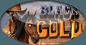 Игровой автомат Black Gold Betsoft