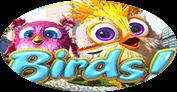 Птицы!